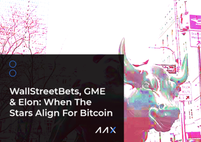 WallStreetBets, GME & Elon: When The Stars Align For Bitcoin