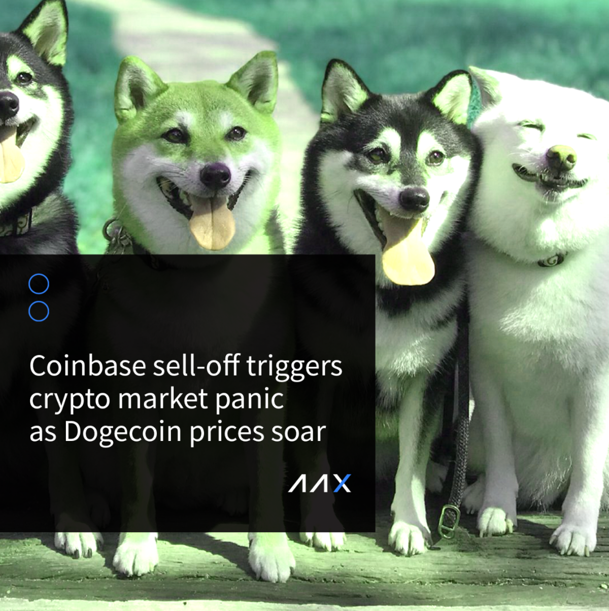 Coinbase sell-off triggers crypto market panic as Dogecoin prices soar